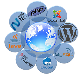 Web Design & Development Solutions
