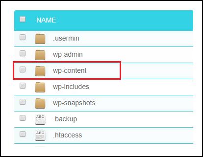 WP content folder